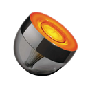 Philips_Iris.orange_grey.png.291a3066955e0d9a7eb5861903aa8cac.png